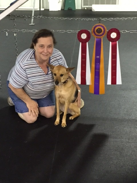 Claire and Barbara Casto with title ribbons from her UACHX in UKC agility