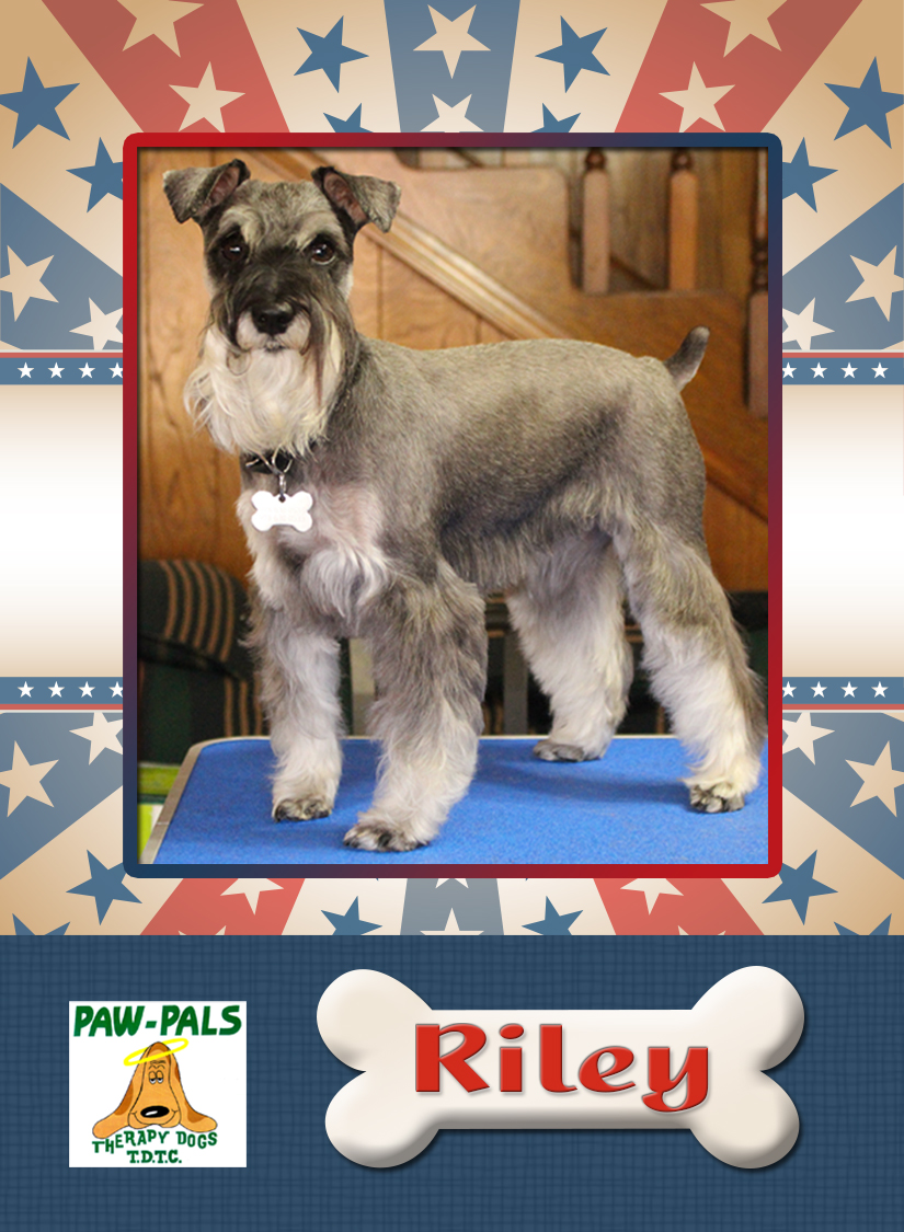 Riley, owned by Ken & Suzanne McDonnell