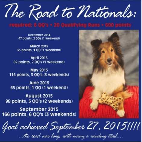 Jane Tyson and Kenzie are going to the AKC Agility Nationals!
